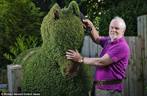 英国人都喜欢园艺